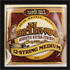 Ernie Ball 12 String Medium Earthwood 80/20 Bronze Guitar Strings .011 - .052