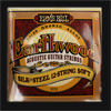Ernie Ball 12 String Soft Earthwood Silk & Steel Guitar Strings .009 - .046