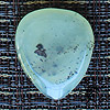 Jewel Tones New Jade Guitar Plectrums